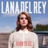 Lana Del Rey Elizabeth Grant