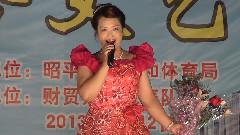 昭平县2013年欢乐桂江广场综合文艺演出 财贸系统代表队
