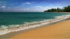 迷人的夏威夷风光