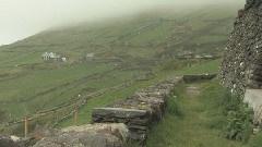 爱尔兰丁克尔半岛