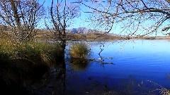 Solitude亚历山大利娜湖