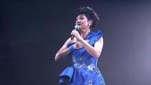 万水千山纵横 叶丽仪45年香港情演唱会 现场版