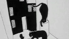 Tale About The Cat And The Moon