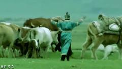 我的家乡内蒙古