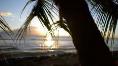 夏威夷毛伊岛风光