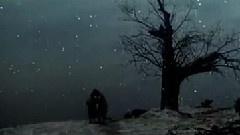 孤独的影子