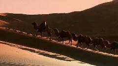 內蒙古阿拉善右旗巴丹吉林沙漠