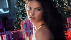 Victoria's Secret Holiday 2014