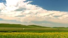 最美中国之内蒙草原