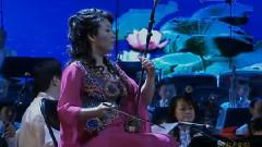 二泉映月 江山如此多娇 中央民族乐团民族音乐会 现场版